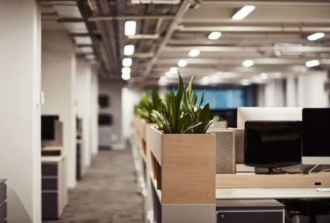 How Our Cleaning Services Can Help Maximise Your Office Productivity